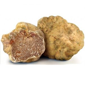 white_truffle_3